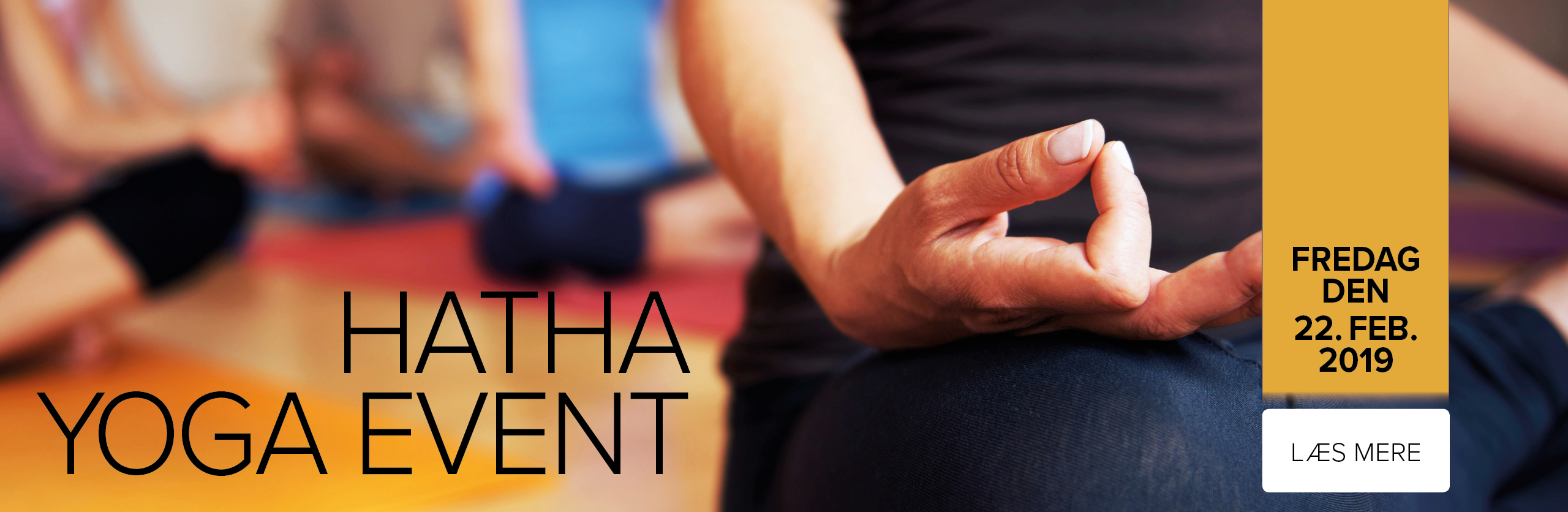 HATHA yoga event feb. 2019